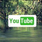 Nejlepší eko a bio youtuberky #GreenLifeStyle