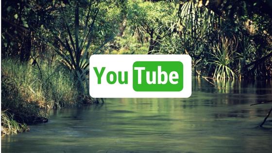 eko a bio youtube