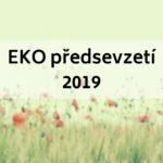 Moje EKO předsevzetí pro rok 2019 (a jak je plním)
