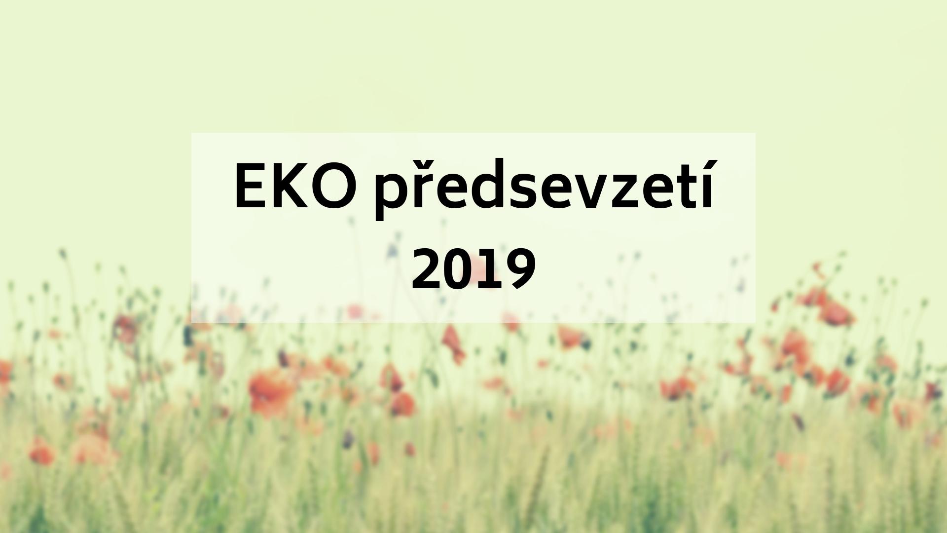 EKO předsevzetí 2019
