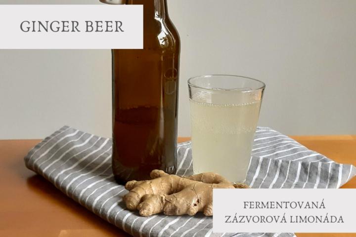 GINGER BEER - fermentovaná zázvorová limonáda