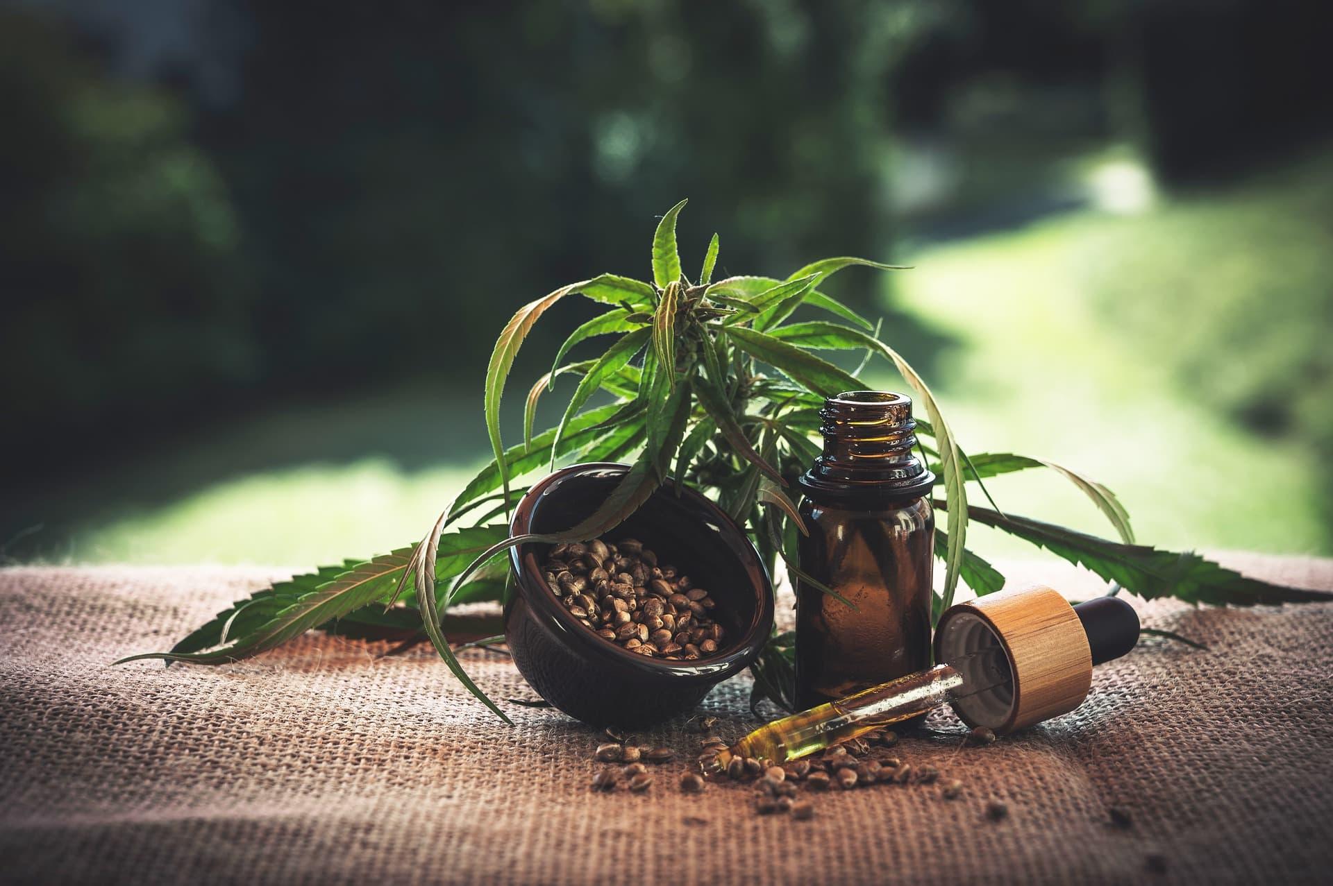 cbd olej - účinky a užívání